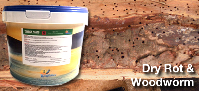 Dry Rot & Woodworm Treatment