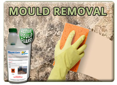 Black Mould Removal | Get rid of mould