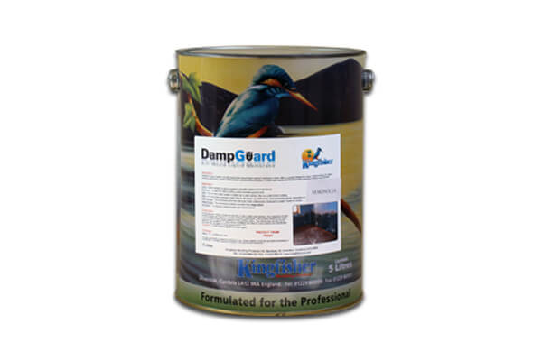 Damp Proof Paint (Damp Guard)