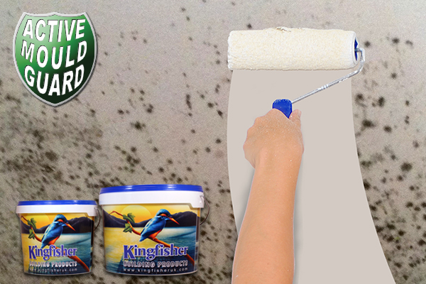 Anti-Mould Paint (Fungicidal Paint)
