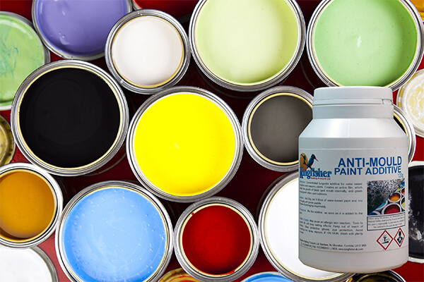 Anti-Mould Paint Additive