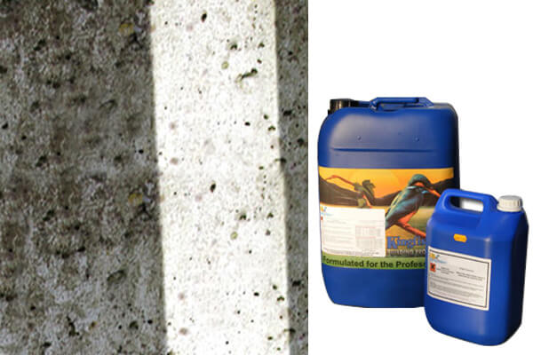 Bio 3 Concrete &  Stone Cleaner