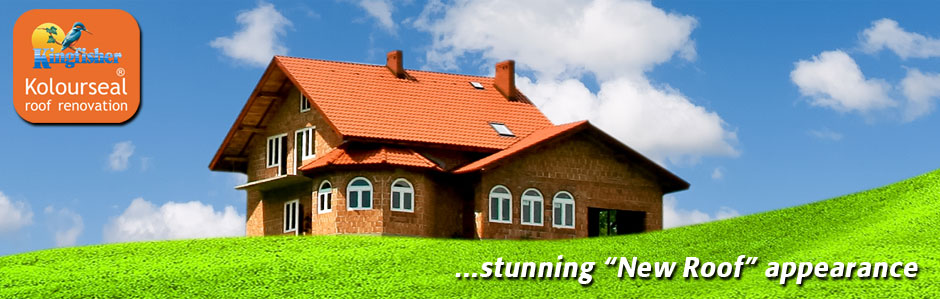 Roof Paint Amp Coatings Roof Repairs Tile Paint Amp Roof
